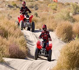 2013 Honda TRX90X - Action