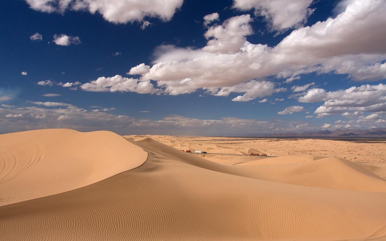 Dunes Sex 55